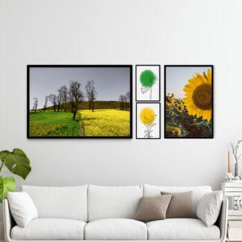 مجموعه تابلوهای طبیعت