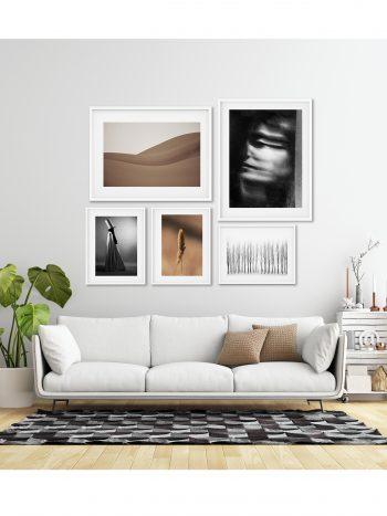 مجموعه تابلوهای خواب دلیرانه