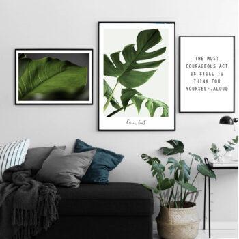 مجموعه تابلو برگ های سبز